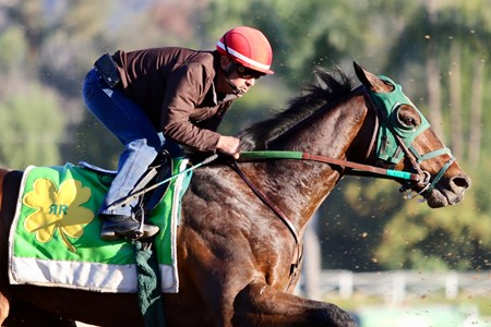 Bolt d'Oro - Santa Anita, February 8, 2018
