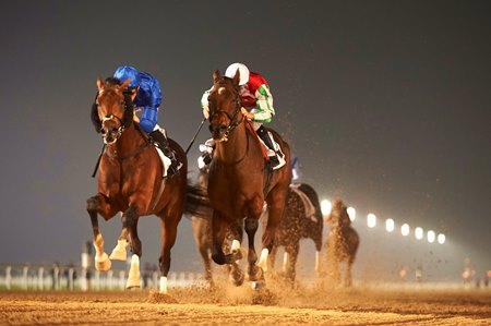 Thunder Snow (outside) wins the Al Maktoum Challenge Round 2 at Meydan Racecourse