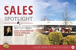 2018 Fasig-Tipton Winter Mixed Sale Recap