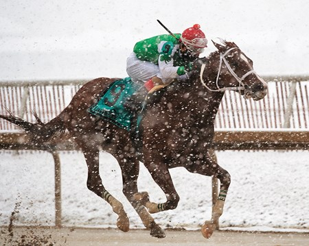 Ms Locust Point, Jorge Vargas Jr., $200,000, Barbara Fritchie Stakes, G2, Laurel Park, February 17 2018