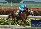 Strike Power wins the Swale Stakes at Gulfstream Park