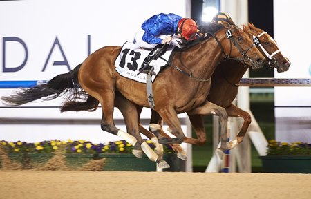 Winter Lightning (outside) wins the UAE One Thousand Guineas Trial at Meydan Racecourse