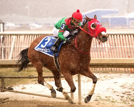 Afleet Willy wins the 2018 John B. Campbell Stakes