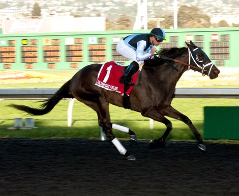 Paved Beats The Boys In El Camino Real Derby Bloodhorse