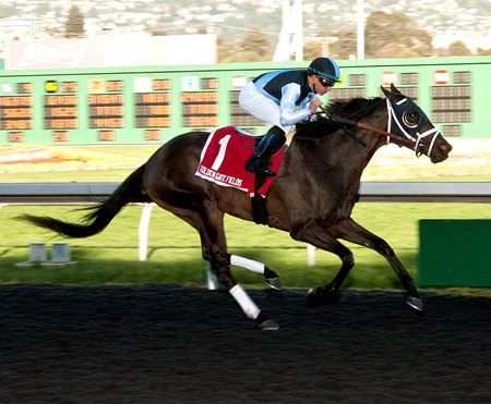 Paved wins the El Camino Real Derby