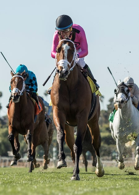 Gary Barber's Conquest Tsunami and jockey Victor Espinoz, center, outrun stablemates Stormy Liberal (Joel Rosario), left, and Calculator (Flavien Prat), right, to win the G3, $150,000 Daytona Stakes, Saturday, February 24, 2018 at Santa Anita Park, Arcadia CA.