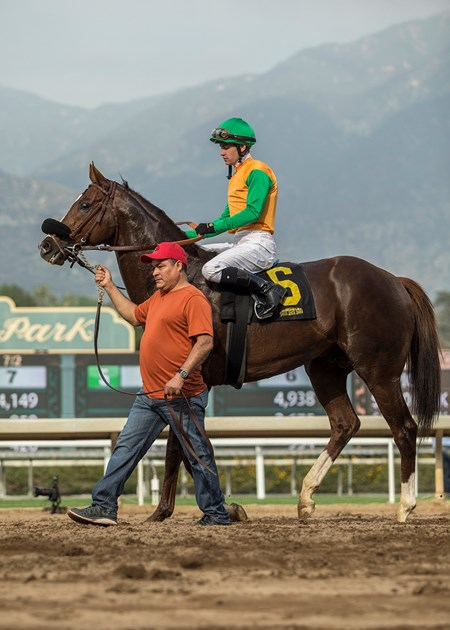 Om and jockey Flavien Prat are guided into the winner's circle after their victory in the G3, $100,000 Thunder Road Stakes, Saturday, February 10, 2018 at Santa Anita Park, Arcadia CA.