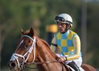 Flameaway and jockey Jose Lezcano after winning the Sam F. Davis Stakes at Tampa Bay Downs