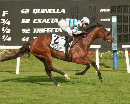 Dona Bruja draws clear to win the Endeavour Stakes at Tampa Bay Downs