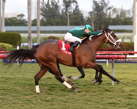 Speed Franco wins the 2018 Dania Beach Stakes