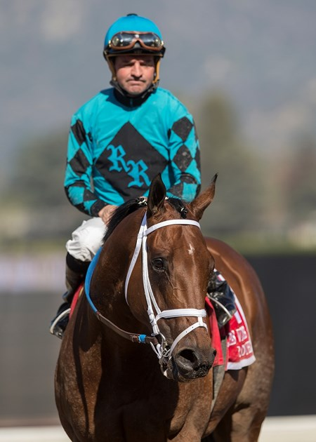 Jockey Kent Desormeaux guides Roy H to the winner's circle after their victory in the G2, $200,000 Palos Verdes Stakes, Saturday, February 3, 2018 at Santa Anita Park, Arcadia CA.