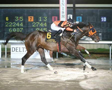 Mobile Bay holds off a persistent Underpressure to win his second straight Louisiana Premier Night Championship by a nose