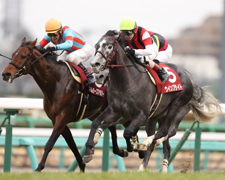 Win Bright (JPN) wins the 2018 Nakayama Kinen