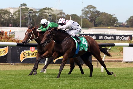 Sunlight (outside) wins the Silver Slipper Stakes over Estijaab at Rosehill Gardens