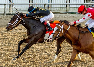 Bravazo (outside) edges Snapper Sinclair to win the Risen Star Stakes at Fair Grounds Race Course