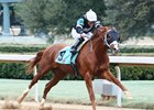 Exclamation Point wins a maiden race by 2 1/2 lengths upon debut at Oaklawn Park