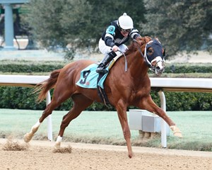 Exclamation Point breaks his maiden by 2 1/2 lengths at Oaklawn Park