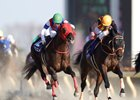 Nonkono Yume (outside) wins the February Stakes over Gold Dream