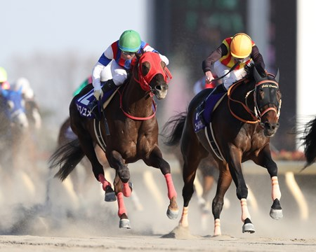 Nonkono Yume (JPN) wins the 2018 February Stakes