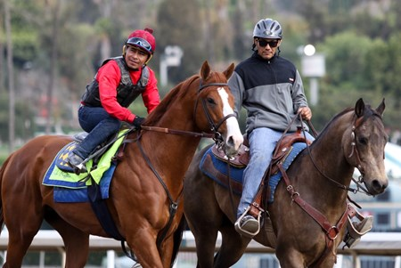Justify - Santa Anita, March 20, 2018 Free for BloodHorse editorial usage based on editorial flat-rate assignment