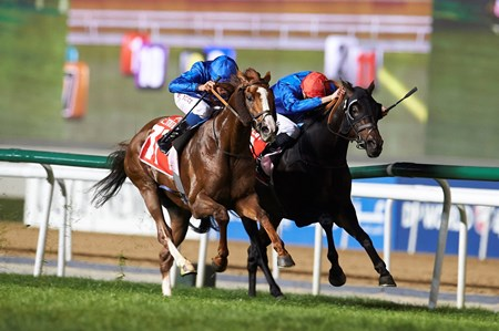 Hawkbill wins the Dubai City of Gold (G2) Sponsored by Emirates SkyCargo at the 10th Dubai World Cup Carnival Race Meeting, March 10th, 2018