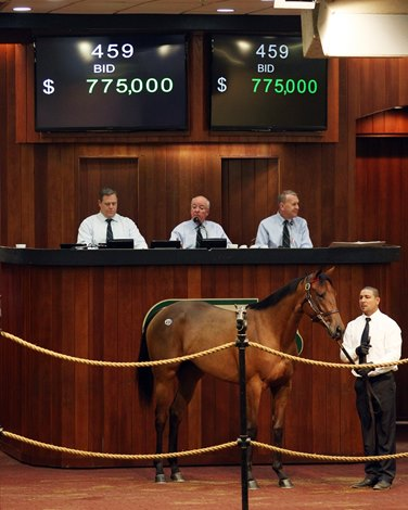 Lnj Acquires Uncle Mo Filly For 775 000 At Obs