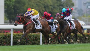 Ping Hai Star sprints to the lead in the Hong Kong Derby at Sha Tin Racecourse