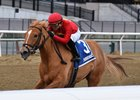 Sounds Delicious wins the Corrections Stakes by eight lengths at Aqueduct Racetrack