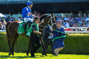 Winx is guided to the winner's circle after the Chipping North Stakes