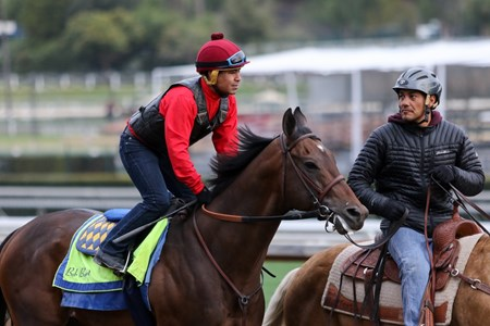 McKinzie - Santa Anita, March 20, 2018 Free for BloodHorse editorial usage based on editorial flat-rate assignment