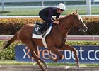 Promises Fulfilled works five furlongs at Gulfstream Park