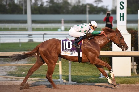Promises Fulfilled wins the 2018 Fountain of Youth Stakes