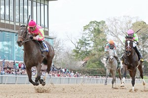 Bolt D Oro Defeats Mckinzie Via Dq In San Felipe Bloodhorse