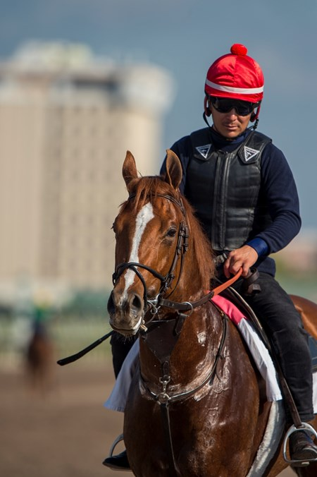 Promises Fulfilled - Gulfstream Park, March 2, 2018