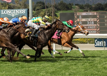 Belvoir Bay (inside) holds off a host of closers to win the Mizdirection Stakes at Santa Anita Park