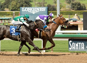 Spectator (inside) wins an optional-claiming allowance at Santa Anita Park