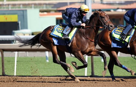 McKinzie works outside stablemate Downtowner, completing seven furlongs in 1:23 4/5