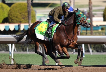 Bolt d' Oro - Santa Anita Park - March 5, 2018