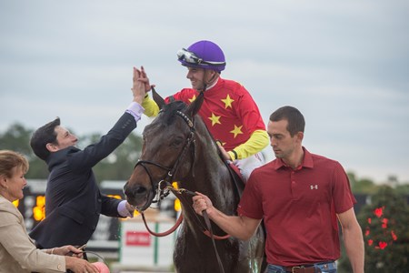 Quip with Florent Geroux wins TheLambholm South  Tampa Bay Derby at Tampa Bay Downs. March 10 2018