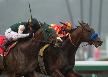 Bolt d'Oro, with Javier Castellano up, left, battle McKinzie and Mike Smith down the stretch and was declared the winner after McKinzie, who finished first, was disqualified, and placed second in the G2 $400,000 San Felipe Stakes Saturday, March 10, 2018 at Santa Anita Park, Arcadia, CA.