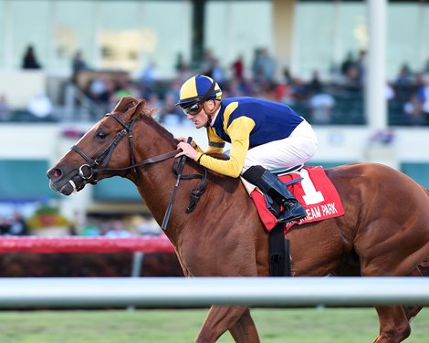 Sadler S Joy Worth The Wait In Mac Diarmida Win Bloodhorse