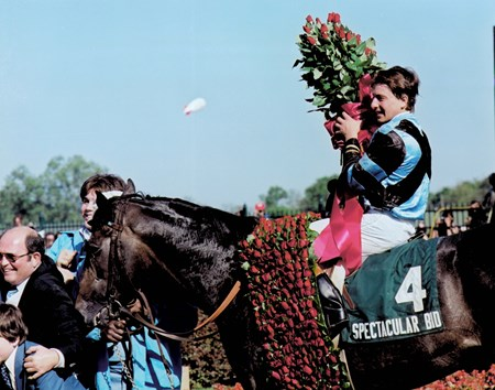 Spectacular Bid in the Kentucky Derby Winner's Circle, Ronnie Franklin aboard