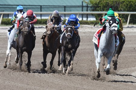 Conquest Big E Inside) wins the Hardacre Mile over Always Dreaming (blue cap) at Gulfstream Park