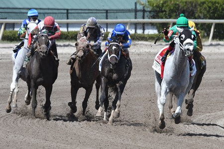Conquest Big E wins the 2018 Gulfstream Park Hardacre Mile
