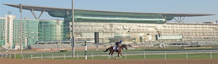 Gunnevera, Dubai World Cup, Dubai World Cup 2018, Meydan UAE
