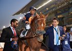 Mind Your Biscuits is led to the winner's circle after his Golden Shaheen repeat at Meydan