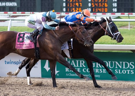 Derby Hopeful Lone Sailor Well Worth Purchase Price
