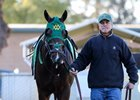 Bolt d'Oro will make his second start of the season in the April 7 Santa Anita Derby at Santa Anita Park