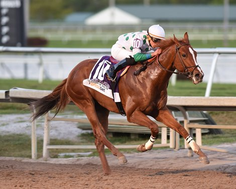 From A Single Broodmare To Promises Fulfilled Bloodhorse