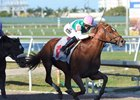 Hofburg breaks his maiden March 3 at Gulfstream Park